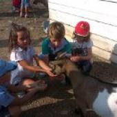 con cabras