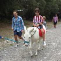 paseo a burro